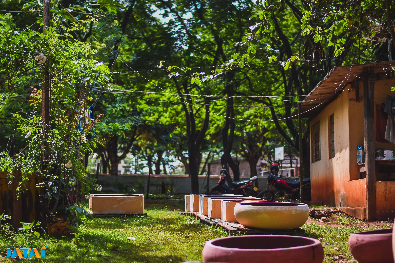 fabricação dos vasos (3)   Prefeitura de Jataí